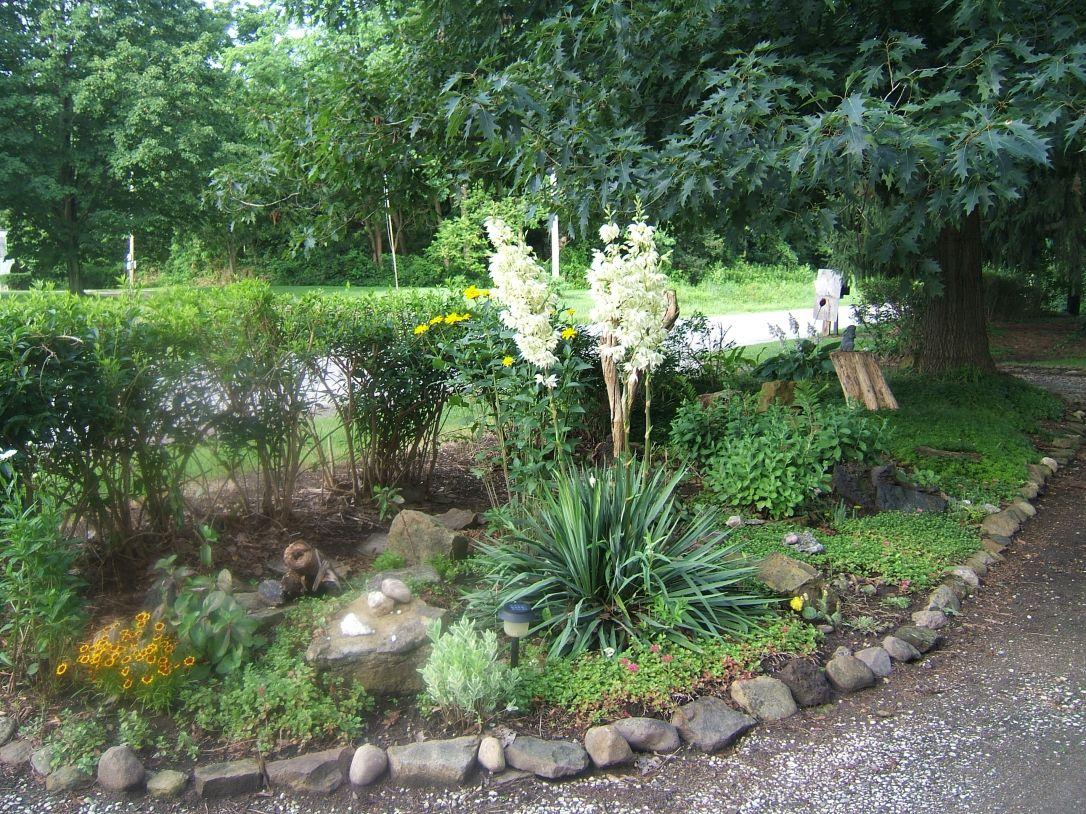 driveway garden 3