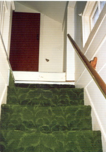 8 new house stairs carpet