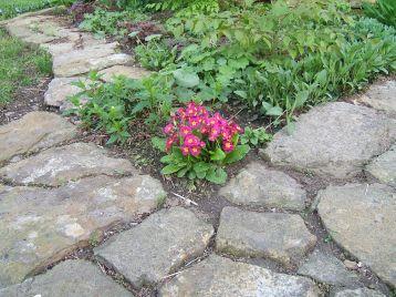 patio stone garden