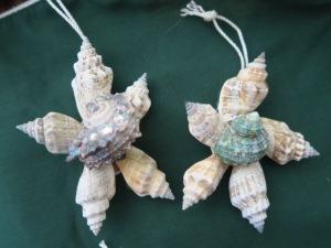 Seashell stars.