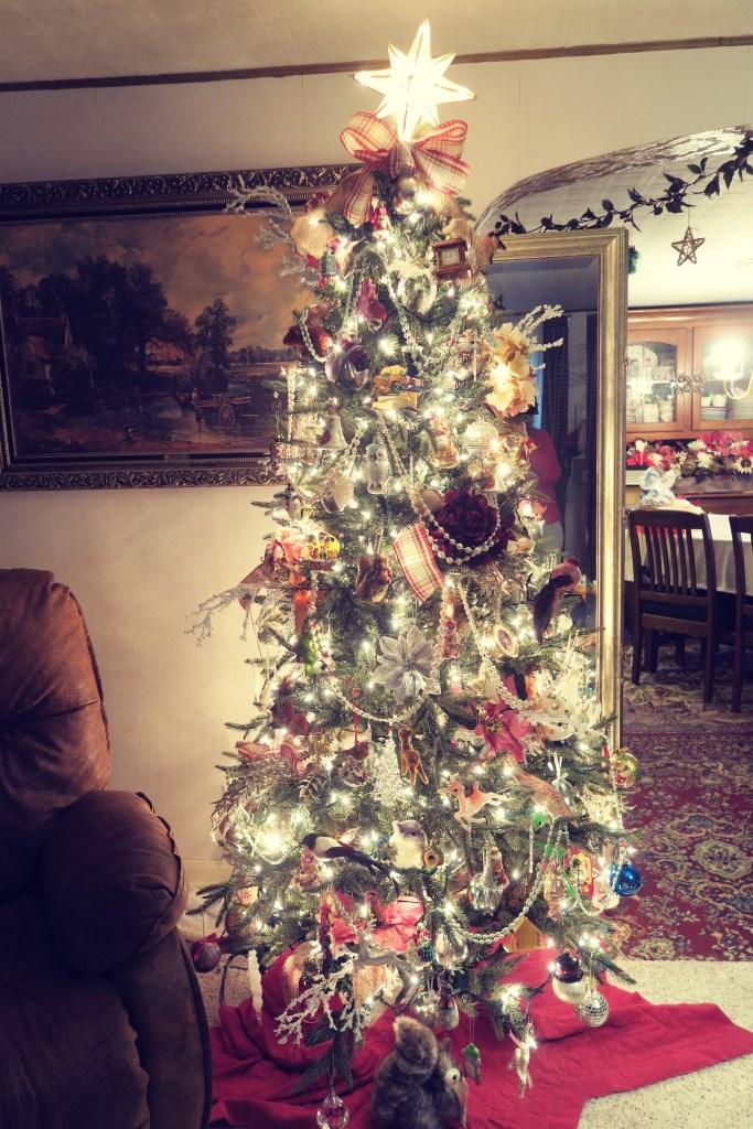 tree 2015-12-01 063